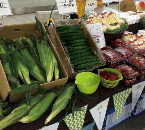 甲斐市で収穫される新鮮な野菜