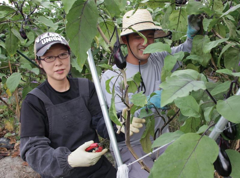 新規就農者インタビュー 西田さん(1)